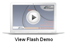 View Flash Demo